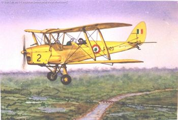 Tigermoth Solo
