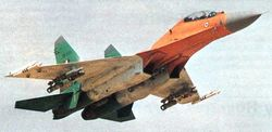 Flanker takes off in tricolor