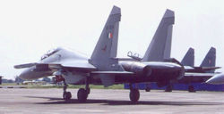 Su-30 from the rear