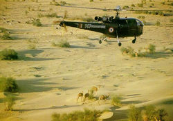 Chetak Z1007 over the Thar