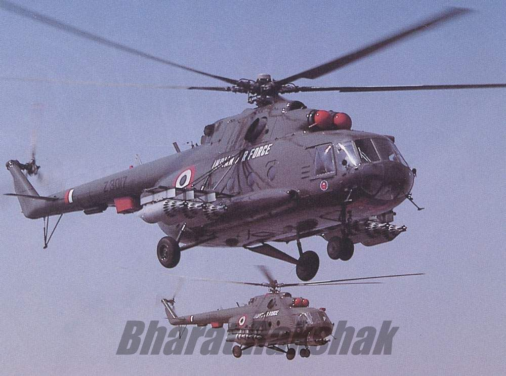 A pair of Mi-17s from the Nubra Warriors.