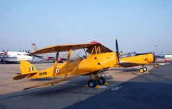 Tigermoth and Harvard