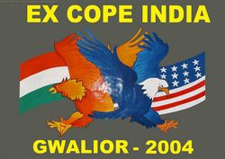 Cope India 2004 - The Indian Perspective