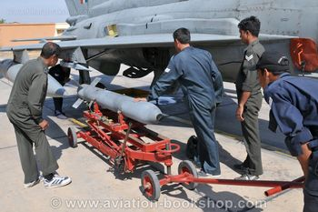 MiG21Bison_S24