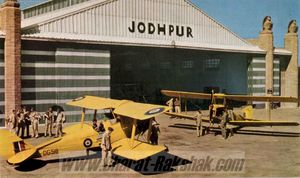 Tigermoths at Jodhpur