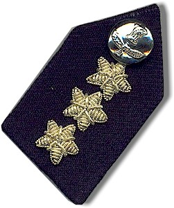 Collar Tabs - Bharat Rakshak:Indian Air Force