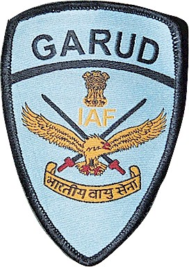 Garud-Patch.jpg (55855 bytes)