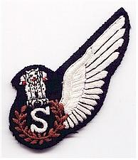 Aircrew Wings - Bharat Rakshak:Indian Air Force