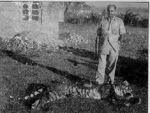 Das-Tigerhunt_small.jpg