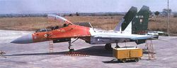 Flanker in Tricolor Scheme